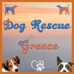 Dog Rescue Greece logo new