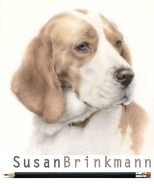 Dog Rescue Greece sponsor Susan Brinkmann