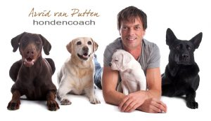 Dog Rescue Greece sponsor Arvid van Putten gedragsdeskundige