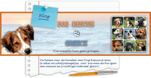 Dog Rescue Greece blogs archief