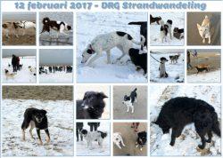 Strandwandeling 2016 1 Noordwijk